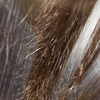 Можно ли красить волосы при месячных