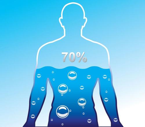 Вода в организме