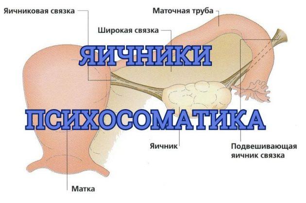 Яичники и психосоматика: особенности лечения