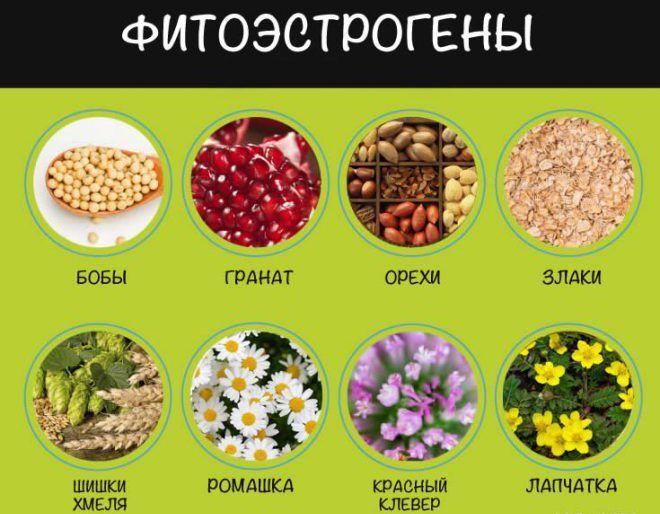 Фитоэстрогены препараты
