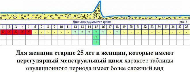 Менструальный цикл, график