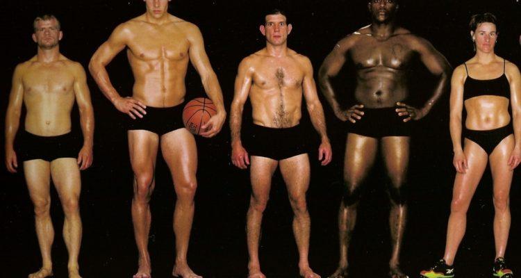 Программа тренировок для набора мышечной массы: для разного телосложения