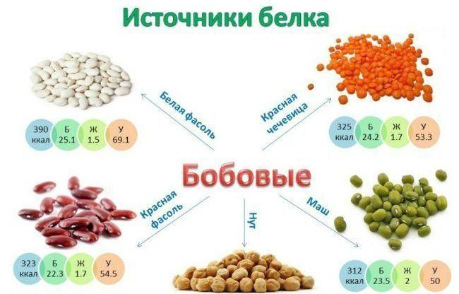 Употребление в пищу бобовых культур