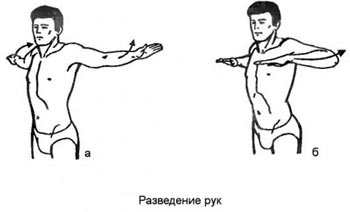 Разведение рук