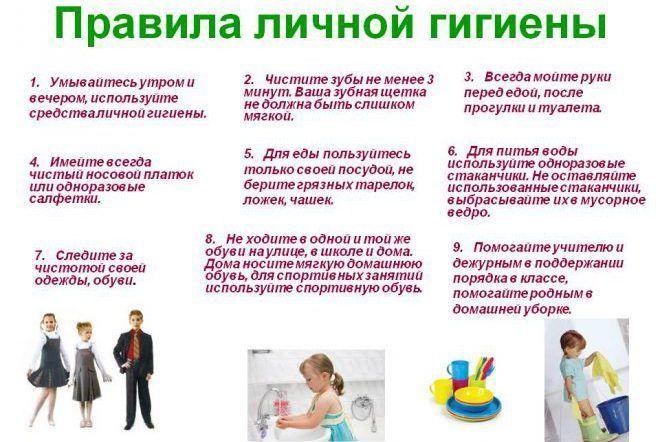 Правила личной гигиены