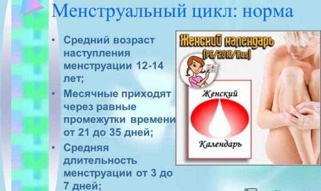 Менструальный цикл (месячные)