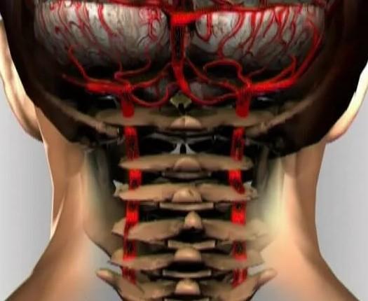 Болит и давит затылок иногда кружится голова
