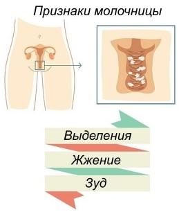 Симптомы вагинального кандидоза