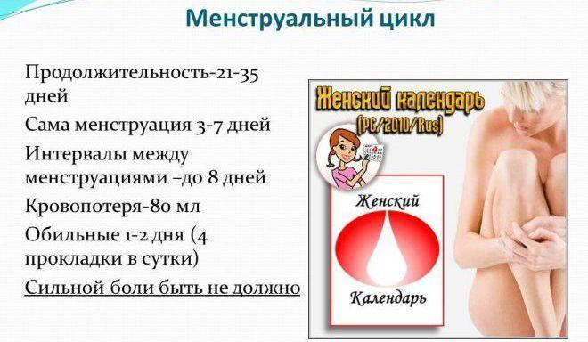 Длительность менструации колеблется от 3 до 7 дней