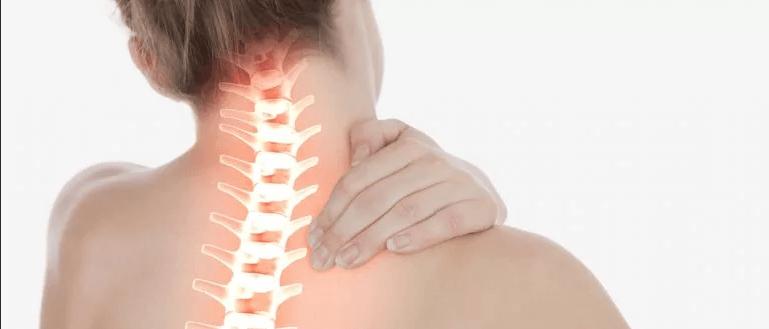 К какому врачу идти если болит шея