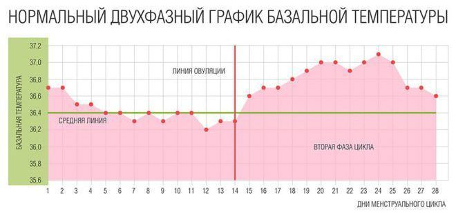 Измерения базальной температуры тела